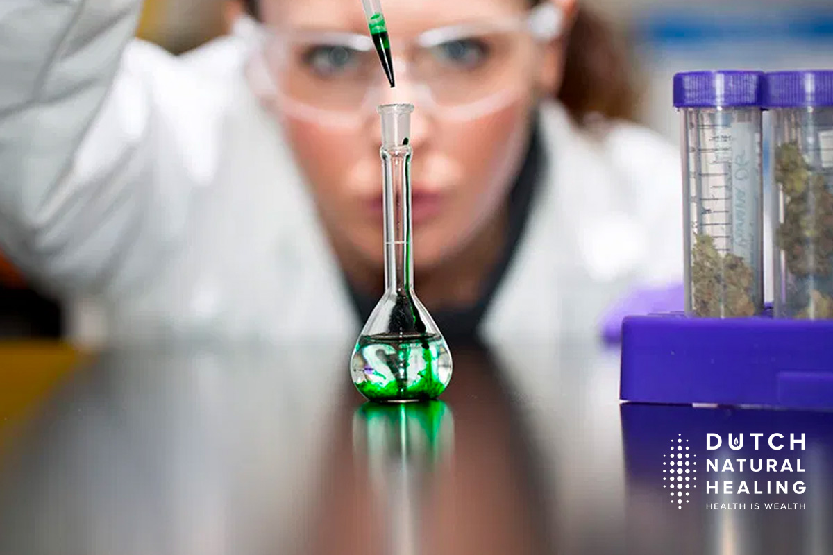 study long term cbd use increase lifespan activity